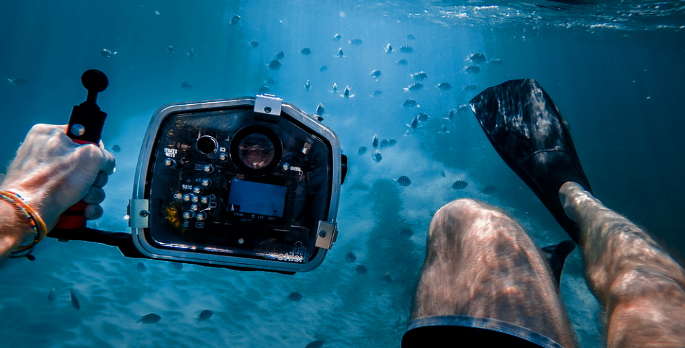 Tips for beginners to shoot the best underwater shots